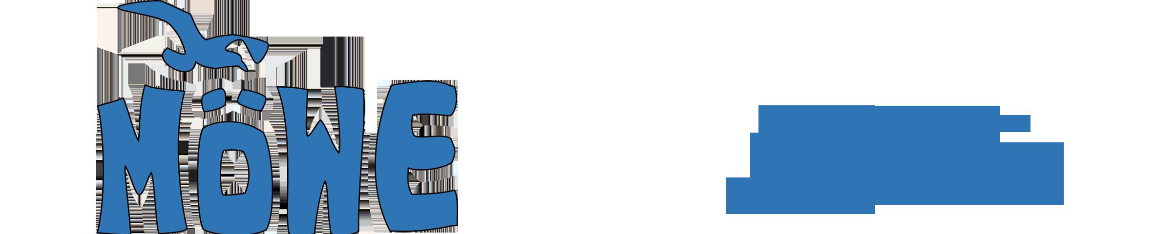 Die Möwe